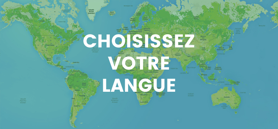 Localisationde sites web