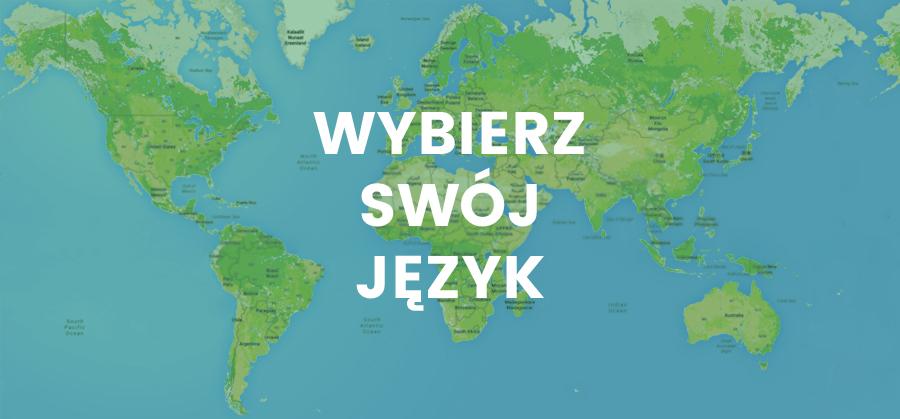 Lokalizacja stron internetowych