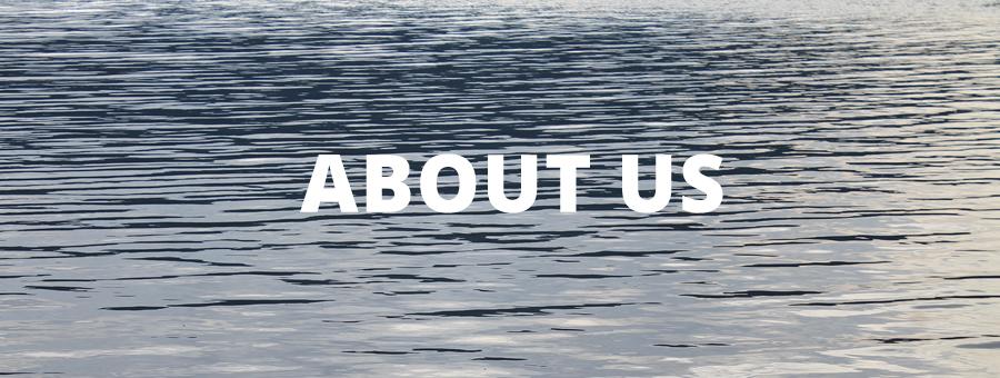 about us - webamatics